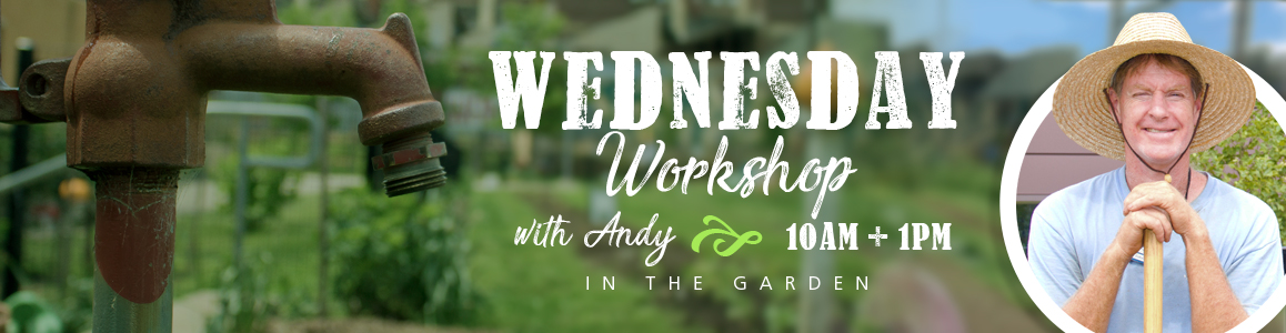 Stop by the Garden each Wednesday at 10am or 1pm for a FREE Horticulture Workshop!